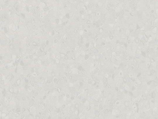 180796 50002