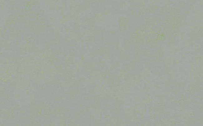 Marmoleum Concrete  3736 green shimmer
