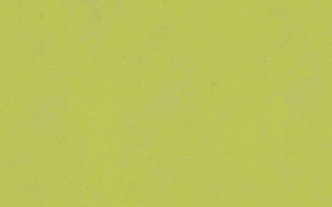 Marmoleum Concrete  3742 green glow