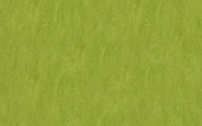 Marmoleum Fresco 3247 green