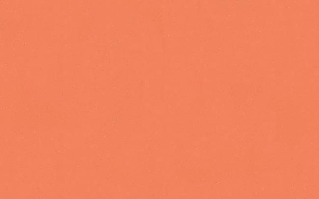 Eternal Colour  40782 papaya scaled